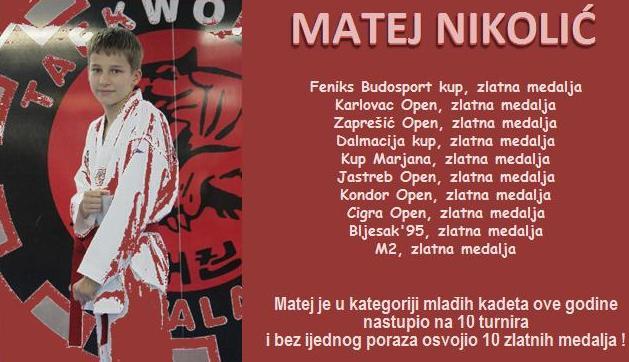 MatejNikolic2014