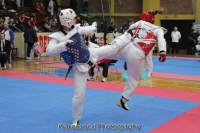 Plemeniti taekwondo turnir Zaprešića
